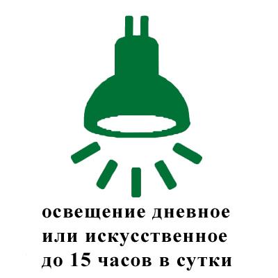 освещение дневное или искусственное до 15 часов в сутки.jpg